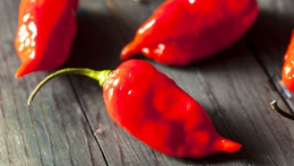All Hell Broke Loose When About 40 Middle School Children Ate Ghost Peppers On A Dare