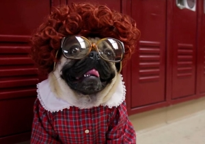 You can't resist Doug the Pug's 'Stranger Things' parody