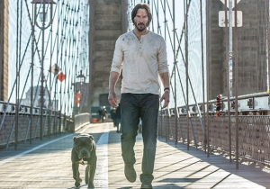 'John Wick 2' image reveals status of John Wick's new puppy…