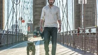 'John Wick 2' image reveals status of John Wick's new puppy…