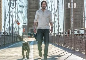 John Wick Has A Badass Dog Partner In 'John Wick: Chapter Two'