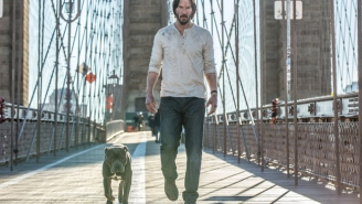 John Wick Has A Badass Dog Partner In 'John Wick: Chapter Two'