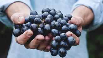 America's Hot New Wine Region is… Virginia?