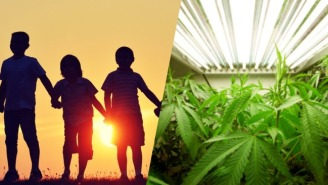 Colorado Is Using Millions Of Dollars Of Extra Weed Money To Stop School Bullying