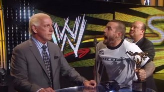 Ric Flair Thinks CM Punk Should Just 'Do Something Else' After His UFC Loss