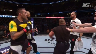 Fabricio Werdum Inexplicably Kicked Travis Browne's Coach After Their UFC 203 Fight
