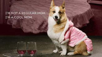 You Can't Sit With These Adorable Puppies Recreating The Best Scenes From 'Mean Girls'