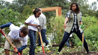 Michelle Obama Boldly Protects Her White House Garden Against Future Bulldozing Presidents
