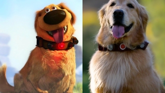 Pixar fans, you gotta watch this 'Dug in Real Life' video