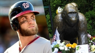 Bryce Harper Paid A Touching Tribute To The Late Harambe Before Game 5