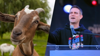 Cubs Executives Celebrated By Eating A Delicious Goat In The Wrigley Field Bleachers