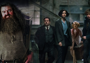 'Fantastic Beasts' And Where To Find Hagrid: A Wizarding World Refresher