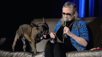 Carrie Fisher's Beloved Dog Gary Is Going To A Good Home