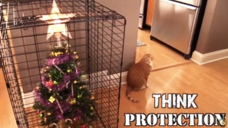 Protect Your Christmas Tree From Your Cat With These 10 Surefire Solutions