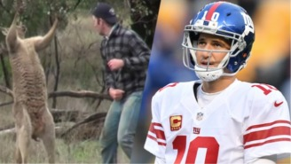 The Giants Watched The Kangaroo Punching Video For Inspiration Before Taking On Dallas