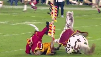Florida State's Horse Mascot Attempted A Revolt Against Its Human Overlord