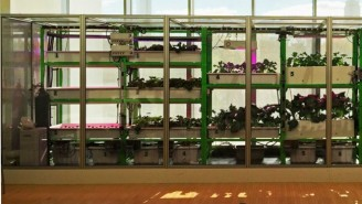 MIT's Food Computer Makes Farming As Simple As Tweeting
