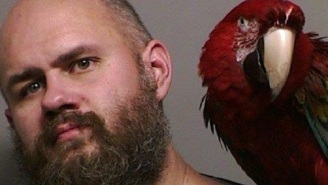 Meet The Oregon Man Whose 4-Year-Old Macaw 'Bird' Had To Be In His Mugshot