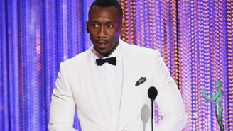 Julia Louis-Dreyfus And Mahershala Ali Accepted SAG Awards With Powerful Words About Trump's Immigration Ban