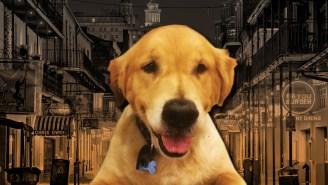 The Worst Film Genre? A Movie In Which A Dog Dies