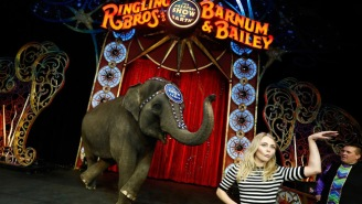 Ringling Bros. And Barnum & Bailey Circus Is Shutting Down After 146 Years