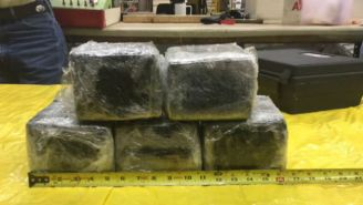 Over 30 Pounds Of Cocaine Was Discovered In The Nose Of An American Airlines Plane