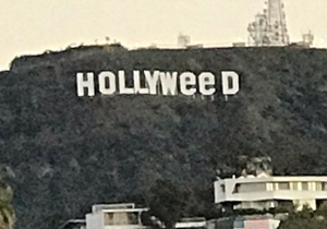 A Mystery Prankster Changed The Hollywood Sign To Reflect Marijuana's Legal Status In California
