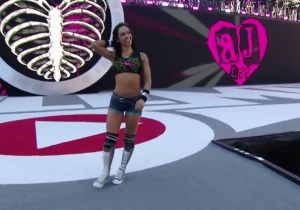 AJ Lee Shared An Inspirational Blog Post To Let The World Know 'I Am Bipolar And I Am Proud'