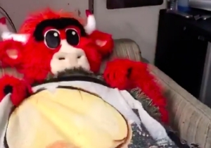 Benny The Bull Got His Very Own Version Of 'Ferris Bueller's Day Off'
