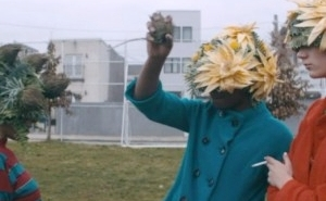 Premiere: You Blew It's Beautiful 'Arrowhead' Video Is A Botanist's Dream