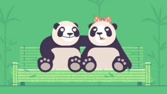 Pornhub Is Employing A Very Unusual (And Sexy) Tactic To Get Pandas Mating For National Panda Day