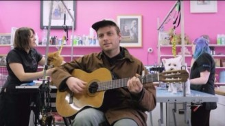 Here's Mac DeMarco Playing 'This Old Dog' In A Dog Grooming Parlor
