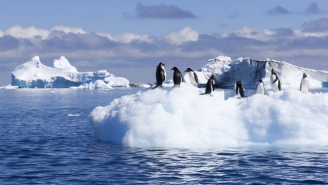 Antarctica Was Warmer In 2015 Than Some Places In America Are Right Now