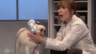 Scarlett Johansson Enters A Nightmare After Discovering Her Dog Is A Trump Supporter On 'SNL'