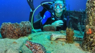 This SCUBA Diver Ditched Expectations To Chase True Happiness
