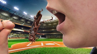 Toasted Grasshoppers Are So Delicious That The Mariners Had To Limit Orders