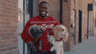 Kevin Hart Is Headed To 'Night School' In A New Comedy Co-Written By The Megastar Comic