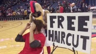 Robin Lopez Took His Latest Bout Of Mascot-Rage Out On Pierre The Pelican