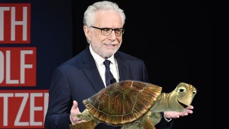 Everybody Is Showing Wolf Blitzer Pictures Of Turtles For This Strange And Silly Reason