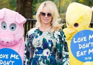 Pamela Anderson Has A Plan To Free Boyfriend Julian Assange And It Involves Opening A Vegan Restaurant