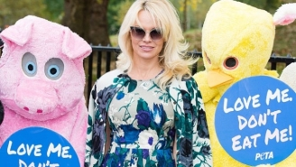 Pamela Anderson Has A Plan To Free Boyfriend Julian Assange And It Involves Opening A Vegan Restaurant