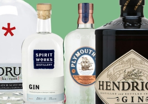 All The Best Gins To Drink On World Gin Day