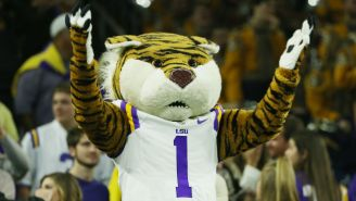 A Man Was Arrested For Sneaking Into LSU's Tiger Stadium With A Prostitute