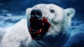 Polar Bears May Soon Try To Feast On Humans Thanks To Climate Change