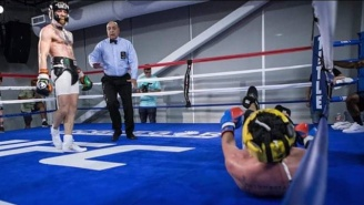 Conor McGregor Wants To Fight Paulie Malignaggi … In The Octagon