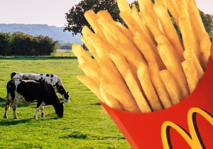 Malcolm Gladwell Has Some Serious Thoughts About McDonald's Fries