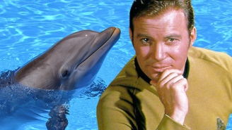 William Shatner Pleads With 'Star Trek' Cruise To Ditch The 'Dolphin Swim' Excursion