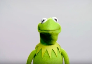 The New Voice Of Kermit The Frog Is Here To Hit You Right In The Childhood