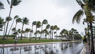Hurricane Irma's Winds Are Thrashing Miami And At Least 1.4 Million Are Without Power In Florida