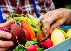 Can We Fix Our Broken Food System?